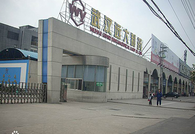 远大医药(中国)有限公司